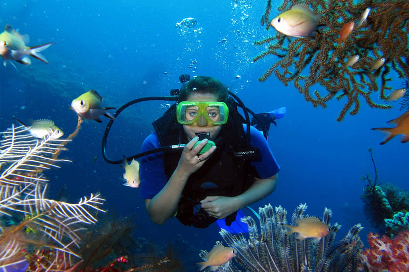 dive and accommodation package